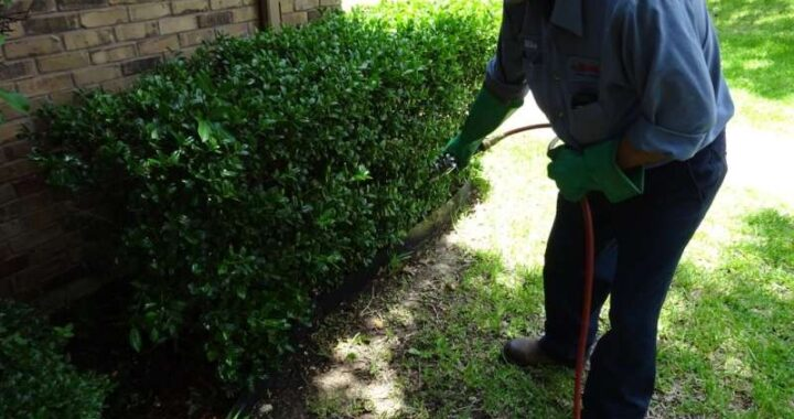 Introduction to Pest Management