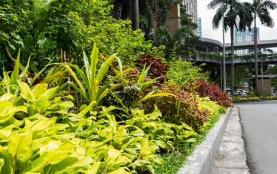 Second Home Landscaping Tips